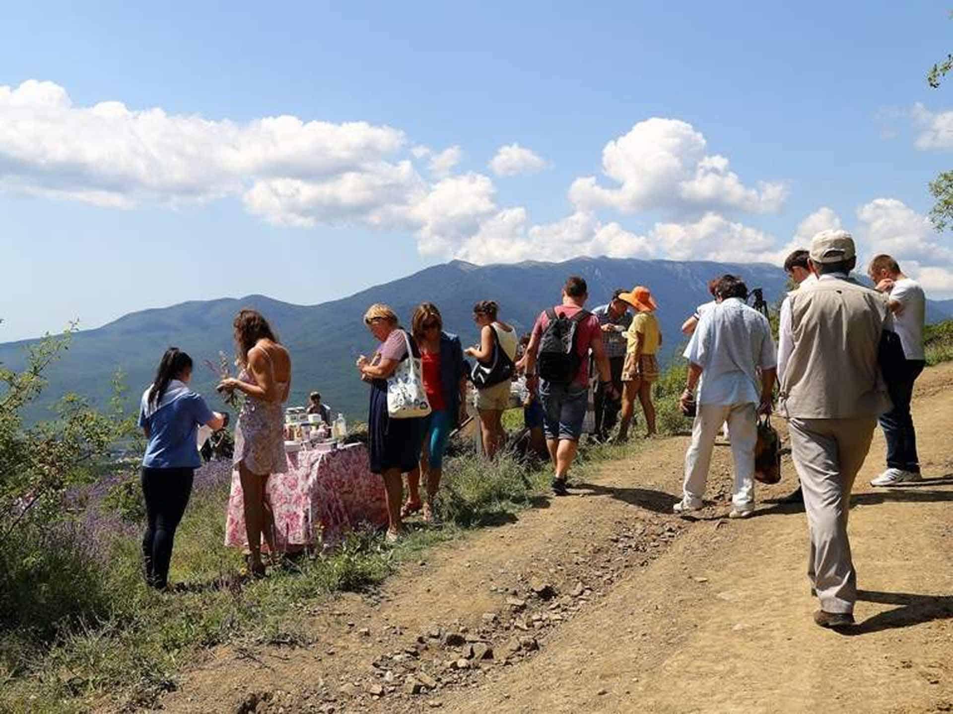 Экскурсия на лавандовом поле